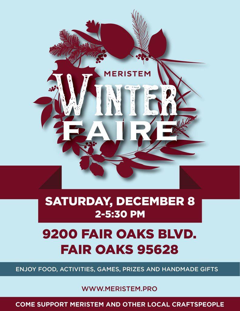 Meristem Winter Faire 2018 Flyer