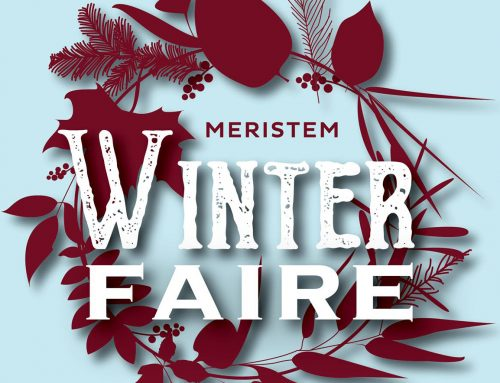 Meristem Winter Faire!