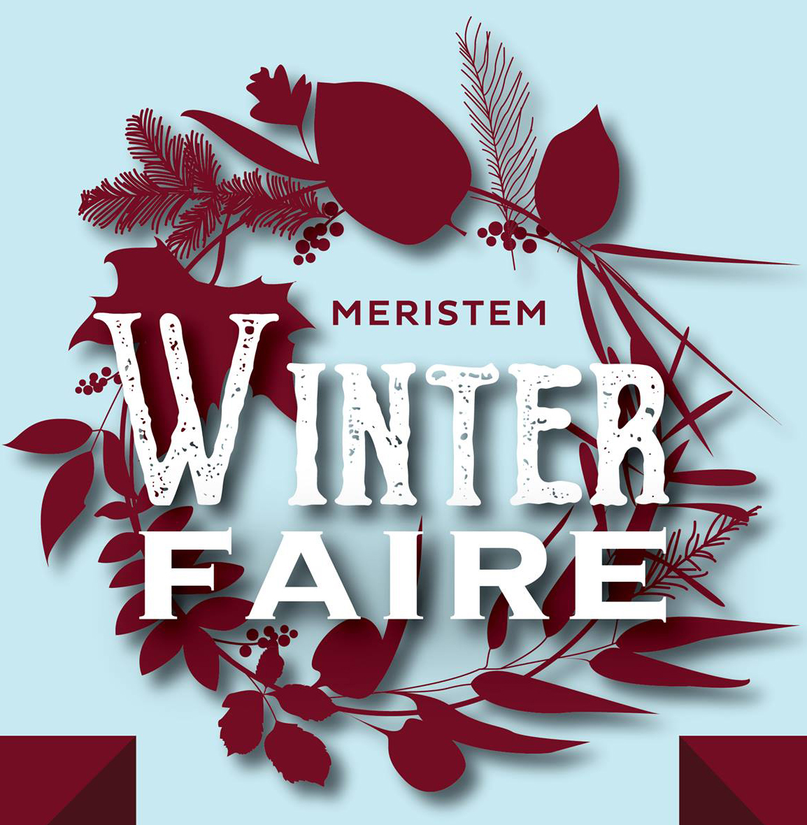 Meristem Winter Faire 2018 Flyer