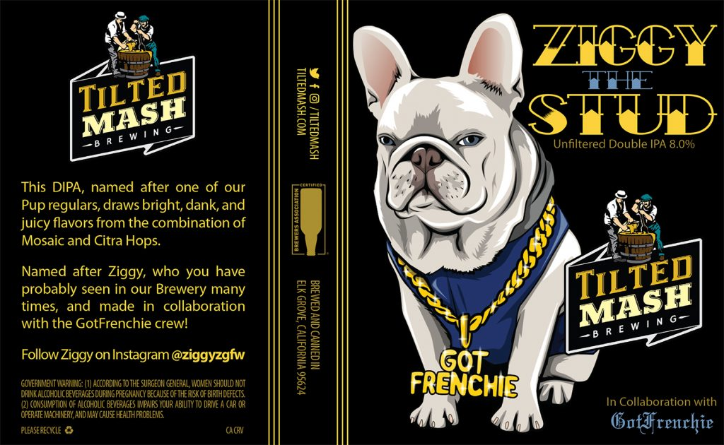 """Ziggy the Stud"" by Jesse Baggs"