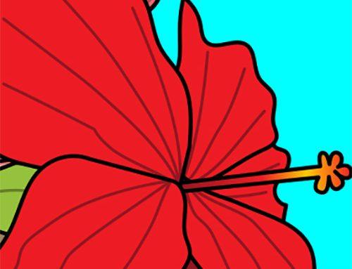 Jamaica Means Hibiscus